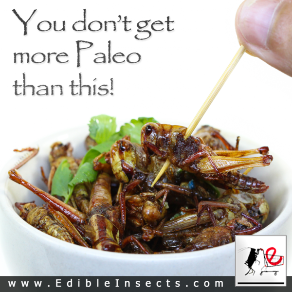You don;t get more Paleo than this!